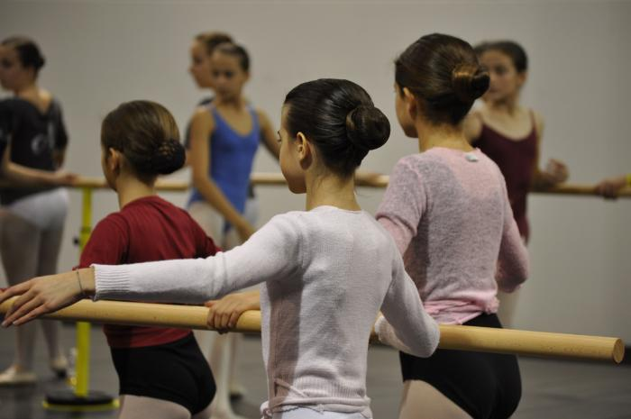 hobby, free time, picture, description, ballet, picture description